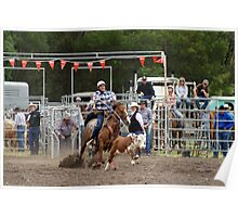 Picton Rodeo ROPE7 Poster