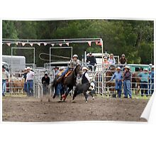 Picton Rodeo ROPE8 Poster