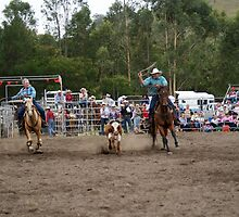 Picton Rodeo ROPE11 by Sharon Robertson