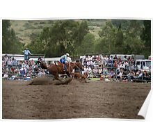 Picton Rodeo ROPE12 Poster