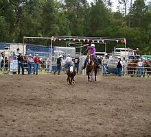 Picton Rodeo ROPE13 by Sharon Robertson