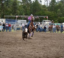 Picton Rodeo ROPE14 by Sharon Robertson