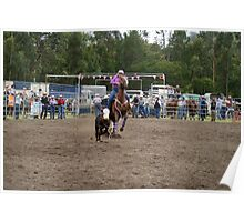 Picton Rodeo ROPE14 Poster