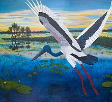 Jabiru Sunset by Wendy Sinclair