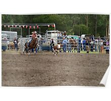 Picton Rodeo ROPE16 Poster