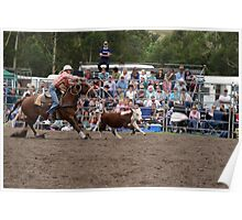 Picton Rodeo ROPE17 Poster