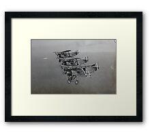 Fairey flycatchers in formation Framed Print