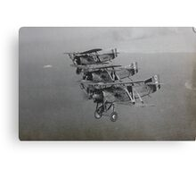Fairey flycatchers in formation Canvas Print
