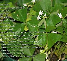 Prayer of St. Patrick by WalnutHill