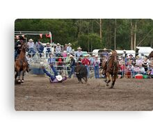 Picton Rodeo STEER4 Canvas Print