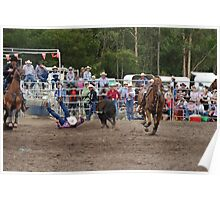 Picton Rodeo STEER4 Poster