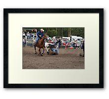 Picton Rodeo STEER5 Framed Print