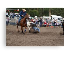 Picton Rodeo STEER5 Canvas Print