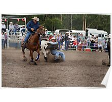 Picton Rodeo STEER5 Poster
