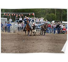 Picton Rodeo STEER6 Poster