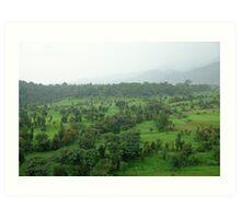 A beautiful green countryside, part of the Kangra Hills Art Print