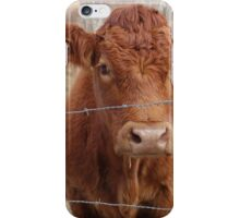 The Red Cow iPhone Case/Skin