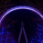 The Eye at Night by Andrew Jackson