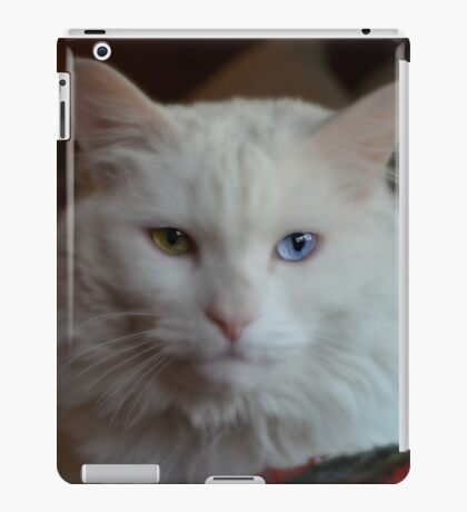Little Precious iPad Case/Skin