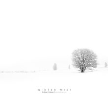 Winter Mist by Andreas Stridsberg