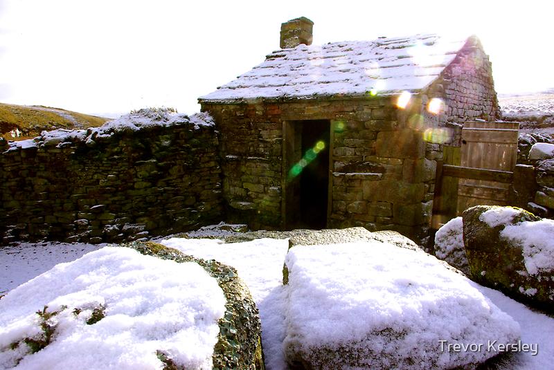Old Cottage by Trevor Kersley