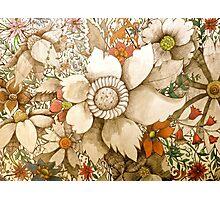 vintage coloured flowers Photographic Print