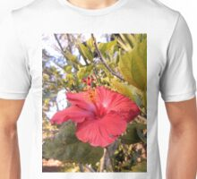 Red Hibiscus Flower Unisex T-Shirt