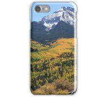 Landscape- Fall, San Juan Range iPhone Case/Skin