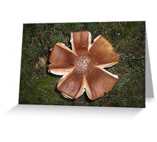 Helicopter mushroom Greeting Card