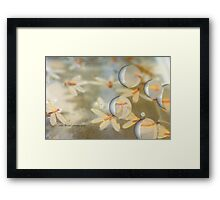 White Pearl Dragons © Vicki Ferrari Photography Framed Print