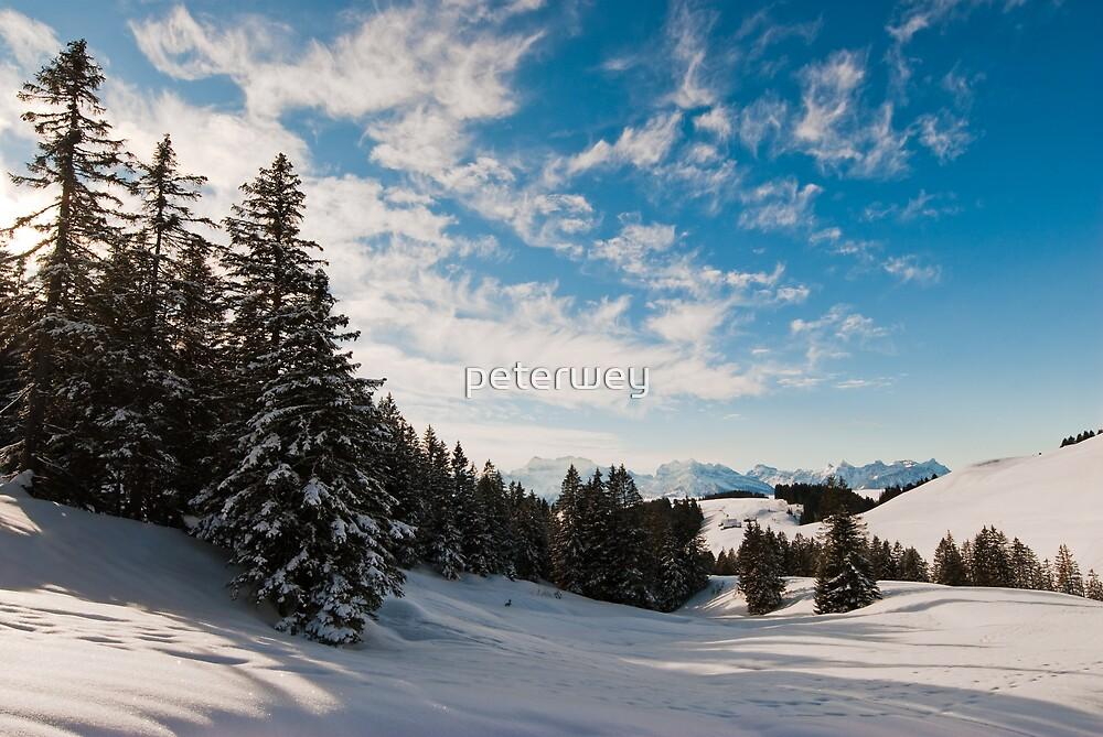 Winter panorama above Amden by peterwey