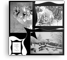 Snow Scene and Begonias  Metal Print