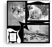 Snow Scene and Begonias  Canvas Print