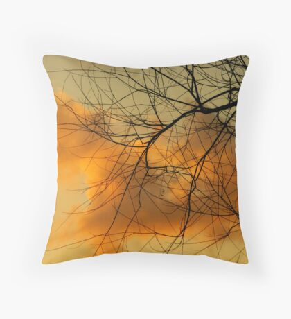 Web of Contrast Throw Pillow