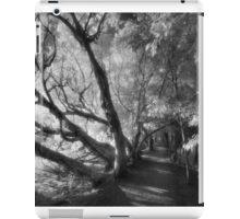 Dark paths iPad Case/Skin