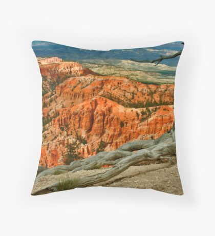 Step back and hold on to me... Throw Pillow