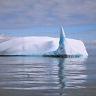 Sail Tail Iceberg by Robert Case