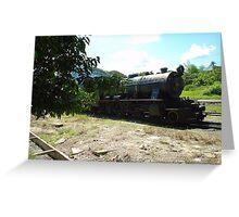 Borneo Rail Greeting Card