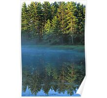 Reflected Forest Poster