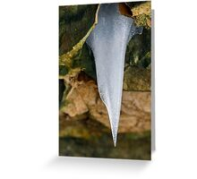 Icicle on the Rocks Greeting Card