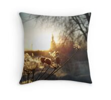 Ice and Sunshine - St. Petersburg, Russia Throw Pillow