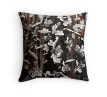 Frosty frosty - St. Petersburg, Russia Throw Pillow