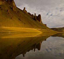 Lake Owyhee, Leslie Gulch, Reflections. Malheur County, Oregon by Albert Dickson