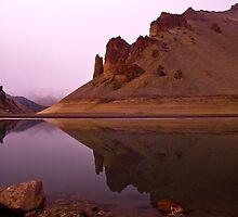 Lake Owyhee at Leslie Gulch by Albert Dickson