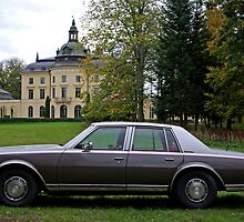 Chevrolet Caprice 1978 by Paola Svensson