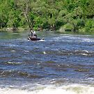In The Rapids by George Cousins