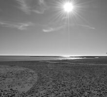 Deserted Beach by Richard Nelson