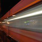 Last Train by Richard Nelson