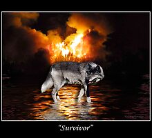 """Survivor"" Grey Wolf & Burning Forest Fire by Val  Brackenridge"