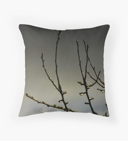 Icey Touch Throw Pillow